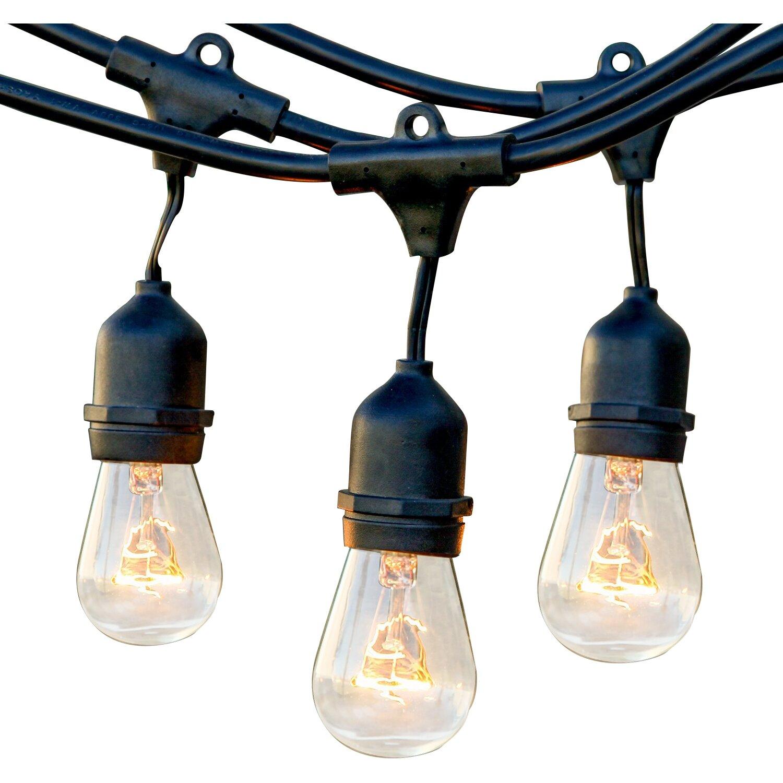 brightech ambience pro led 15 light 48 ft globe string lights reviews wayfair. Black Bedroom Furniture Sets. Home Design Ideas