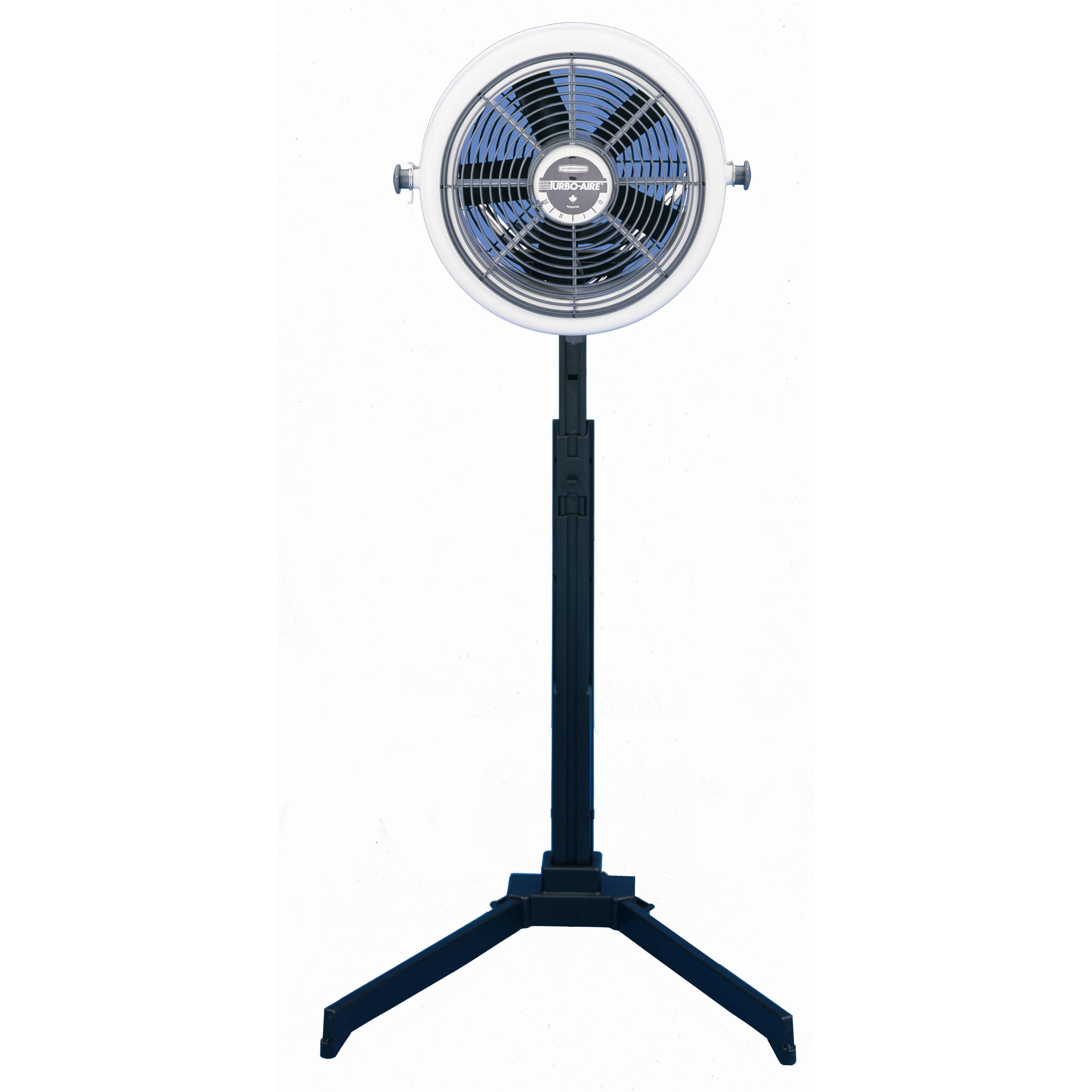 Electric Floor Fans : Seabreeze electric high velocity floor fan reviews wayfair